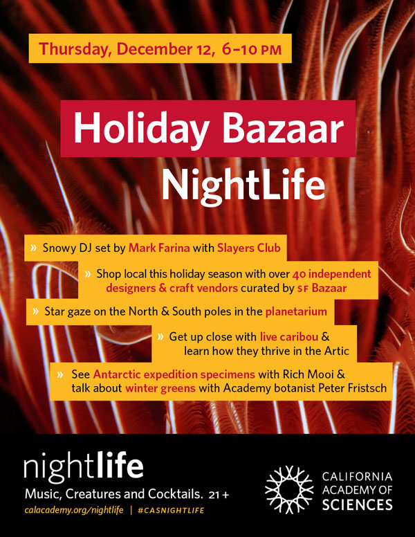 NL_Flyer_HolidayBazaar_600